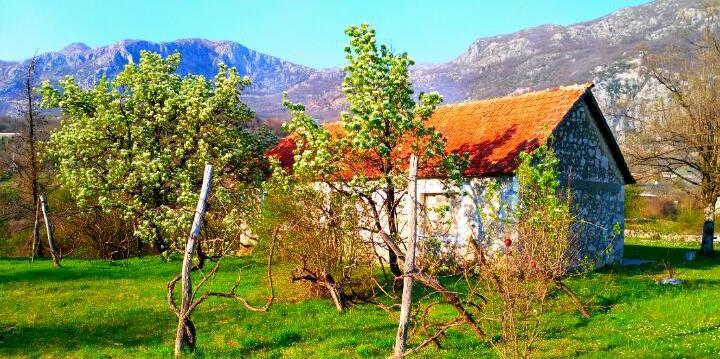 черногория купить дом в деревне